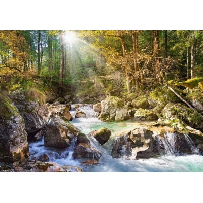 The forest stream, Castorland puzzle 2000 pc