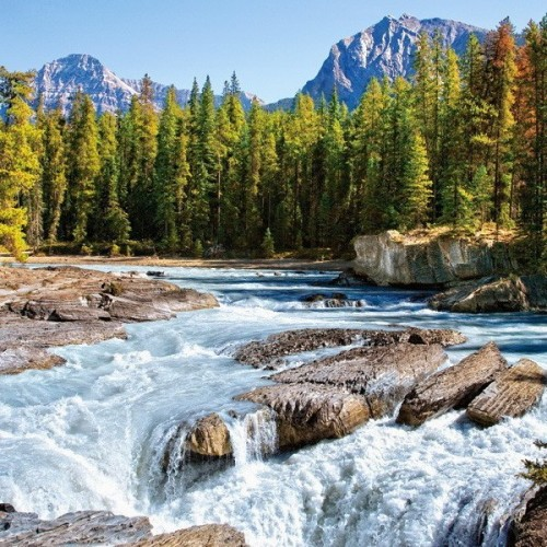 Athabasca River (Jasper National Park) - Canada, Castorland puzzle 1500 pc