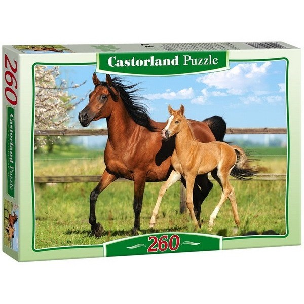 Mare and Foal, Castorland puzzle 260 pc