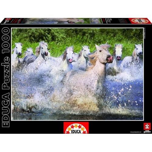 WHITE CAMARGUE HORSES, Educa Jigsaw Puzzle 1000 pcs