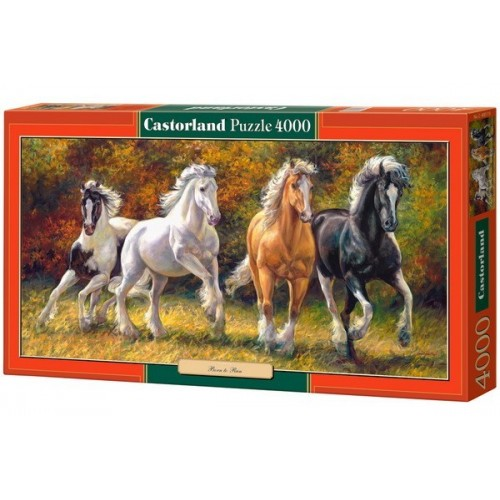 BORN TO RUN, Castorland puzzle 4000 pc