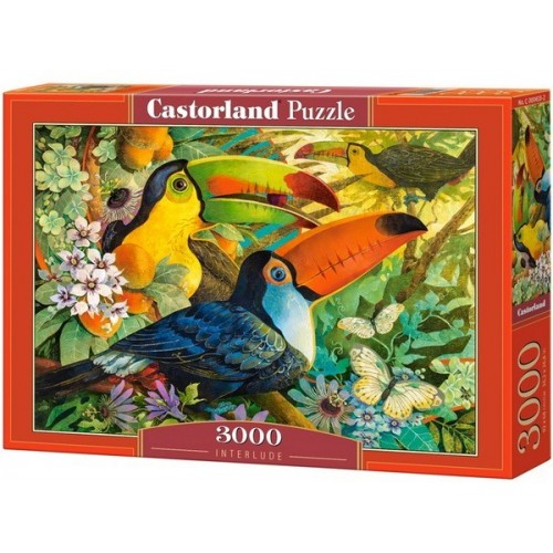 Interlude - David Galchutt, Castorland puzzle 3000 pc