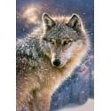 Magányos farkas, 500 darabos Castorland puzzle