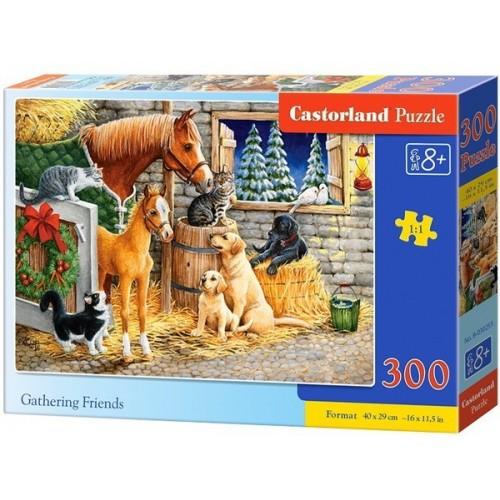 Baráti összejövetel, 300 darabos Castorland puzzle