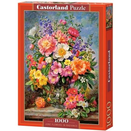Ragyogó júniusi virágok, 1000 darabos Castorland puzzle