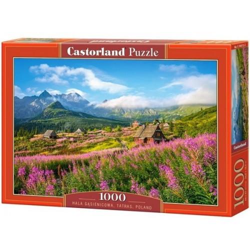 Hala Gasienicowa - Tatras, Castorland Puzzle 1000 pc