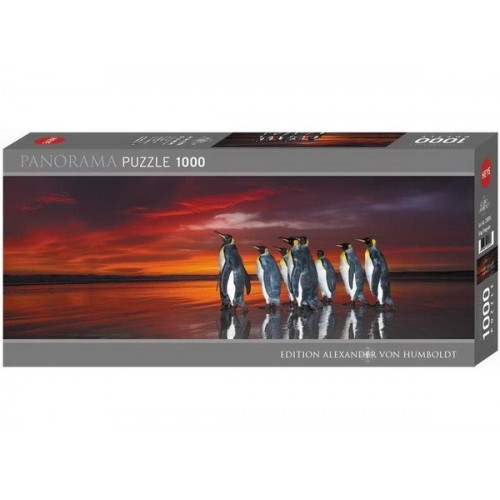 King Penguins, Heye - Edition Humboldt panorama puzzle, 1000 pc