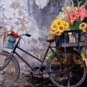 Bicycle with flowers, Educa Puzzle 500 pcs