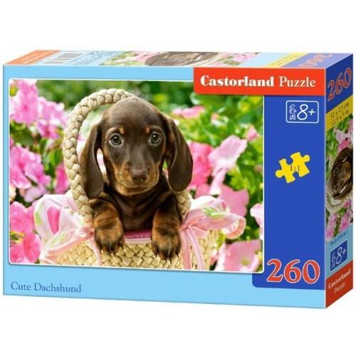 Cute Dachshund, Castorland Midi Puzzle 260pc