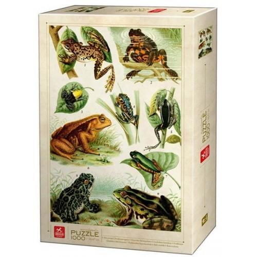 Béka enciklopédia, 1000 darabos Deico puzzle