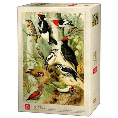 Bird Encyclopedia, Deico puzzle 1000 pc