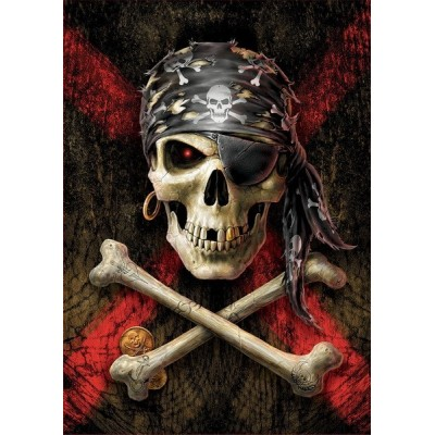 Pirate Skull, Educa Puzzle 500 pcs