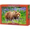 Bear on the Meadow, Castorland Puzzle 500 pcs