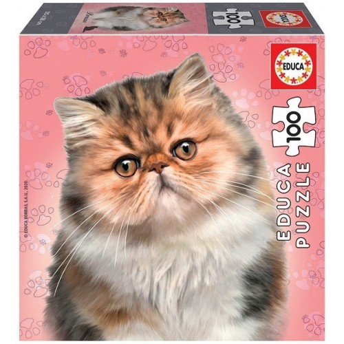 Persian cat, Educa puzzle 100 pc