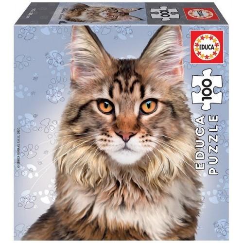 Maine Coon cat, Educa puzzle 100 pc